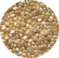 Voskové perle, oliva 06x04mm, krémová, balení 30 ks